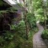 【熊本】子連れで楽しめる熊本旅行。黒川温泉・南阿蘇・高千穂