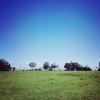 灘丸山公園へ!神戸市内、子連れで遊べるおすすめ公園。芝生が広くて景色が最高だよ