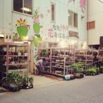 【神戸】三ノ宮の激安花屋さん フラワーショップ潤にいってみた