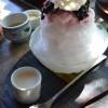 小豆島旅行:エンジェルロード・銚子渓の猿山・森國酒造