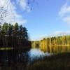 北欧旅行ログ⑤ フィンランド ヌークシオ国立公園散策