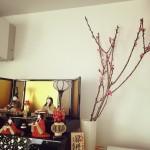 季節の枝ものを飾る。春は節句のももがおすすめ